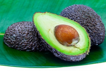 South African producers export 62 thousand tons of avocado